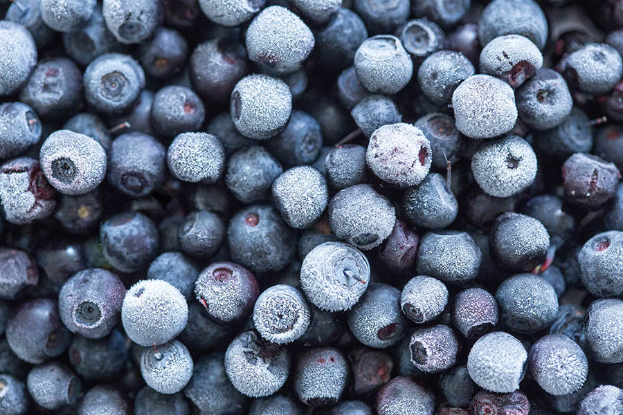 <span>Lifestyle</span>Frozen Berries of Sugarland