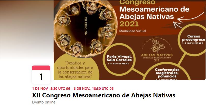 XII Congreso Mesoamericano de Abejas Nativas